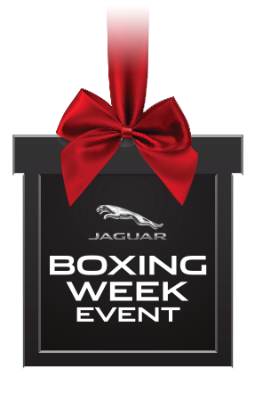 Boxing Week Present Graphic